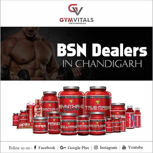 BSN Dealers In Chandigarh