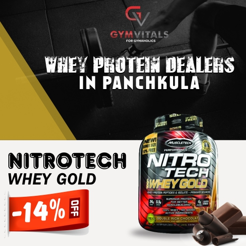 Whey Protein Dealers In Panchkula